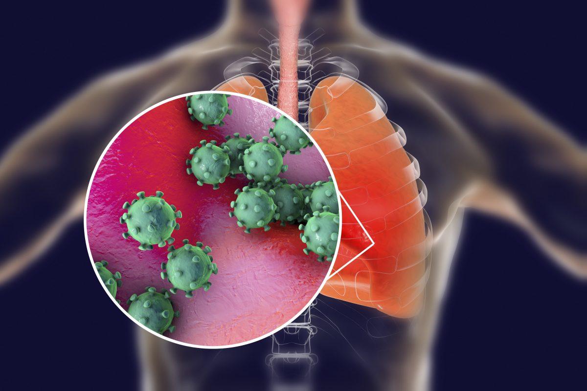 Novel Coronavirus Outbreak Sparks Global Concern