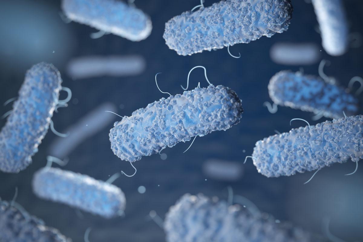 Legionnaires' Disease: No Longer a Mystery, Still a Threat